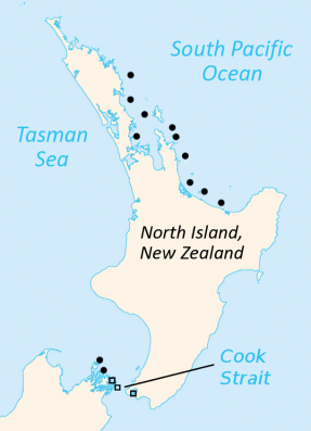 north_island_map_tuatara-min