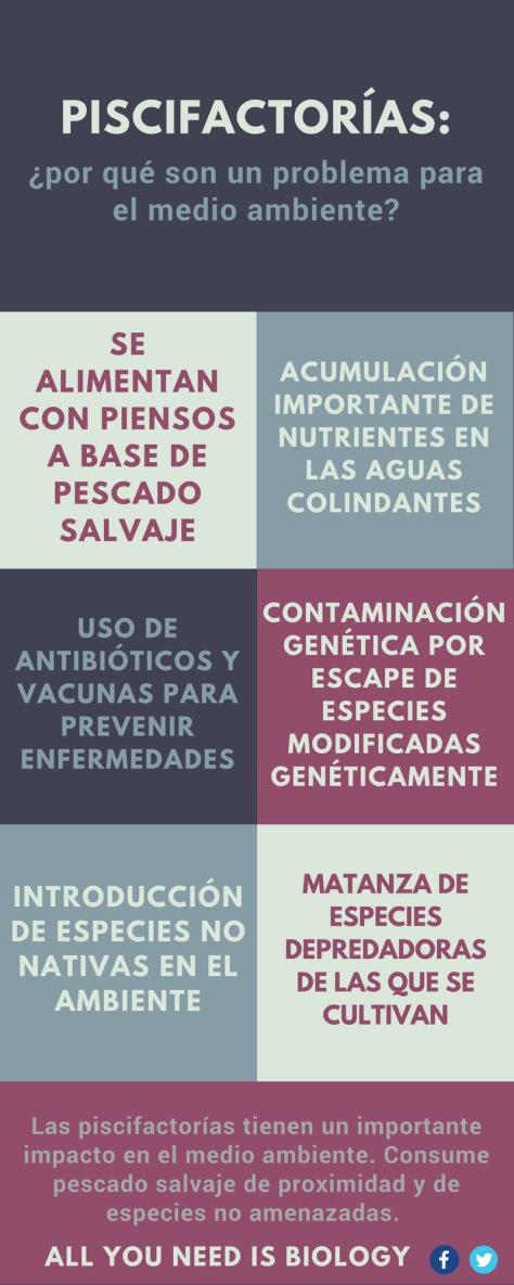 piscifactorias-solucion-sobrepesca-impacto-medio-ambiente