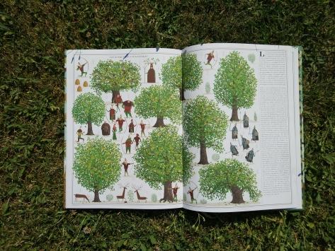 árboles, piotr socha, maeva, maeva young, libros infantiles, libros naturaleza