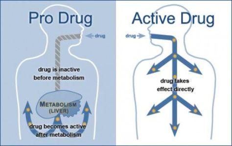 active and prodrug